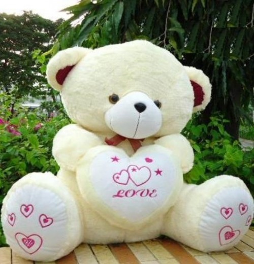 Cute Teddy Bear 01