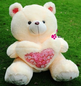 Cute Teddy Bear 05