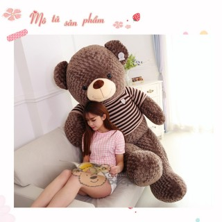 Cute Teddy Bear 08