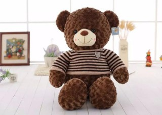 Cute Teddy Bear 10