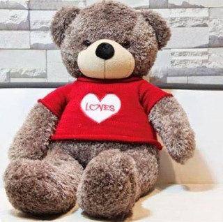 Cute Teddy Bear 15