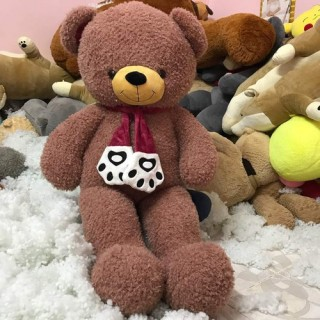 Cute Teddy Bear 16
