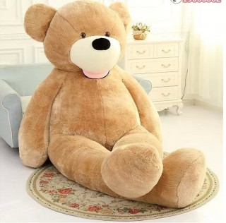 Cute Teddy Bear 17