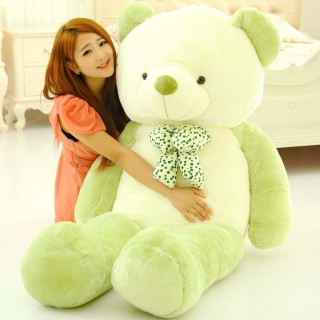 Cute Teddy Bear 19