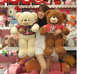 Cute Teddy Bear 22