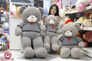 Cute Teddy Bear 23