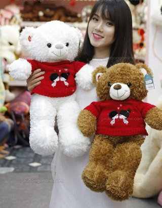 Cute Teddy Bear 24