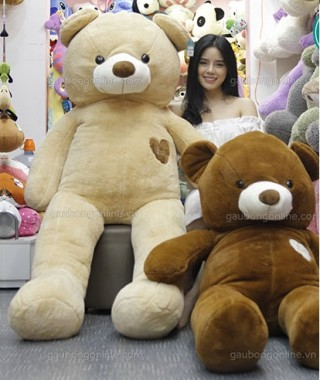 Cute Teddy Bear 26
